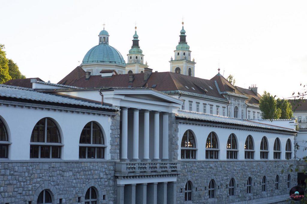 Lubiana, vista fiume sul mercato centrale e campanili cattedrale di san nicola sullo sfondo